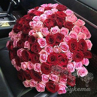 101 красная и розовая роза 60 см.